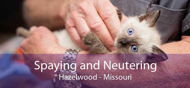 Spaying and Neutering Hazelwood - Missouri