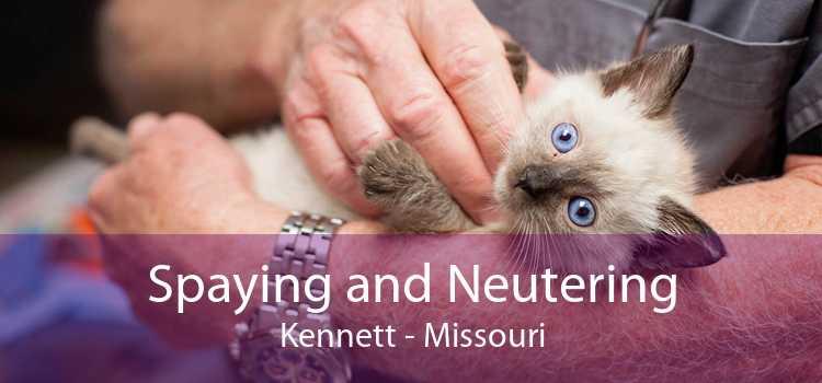 Spaying and Neutering Kennett - Missouri