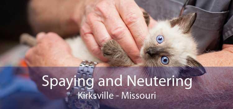 Spaying and Neutering Kirksville - Missouri