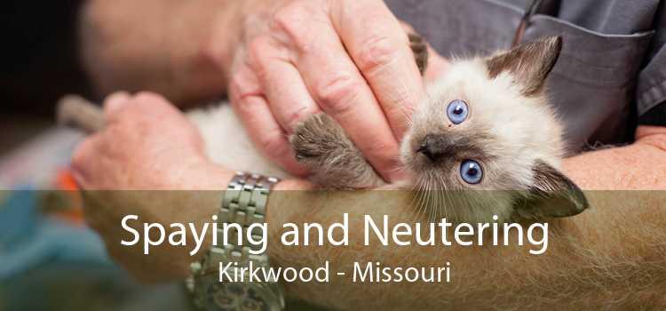Spaying and Neutering Kirkwood - Missouri