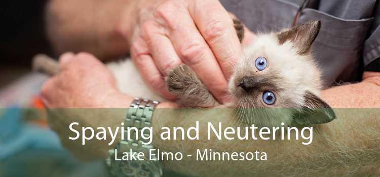 Spaying and Neutering Lake Elmo - Minnesota