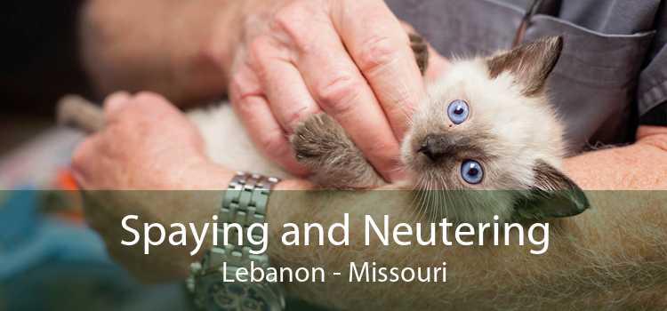Spaying and Neutering Lebanon - Missouri