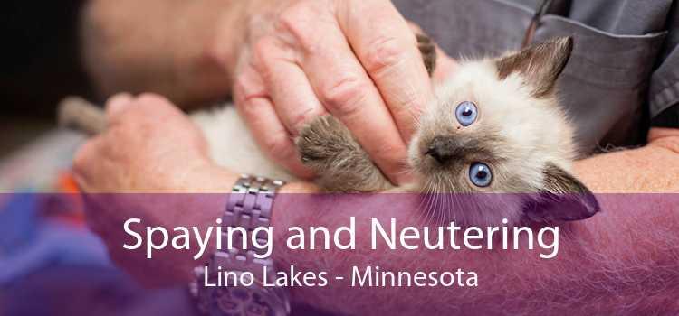Spaying and Neutering Lino Lakes - Minnesota