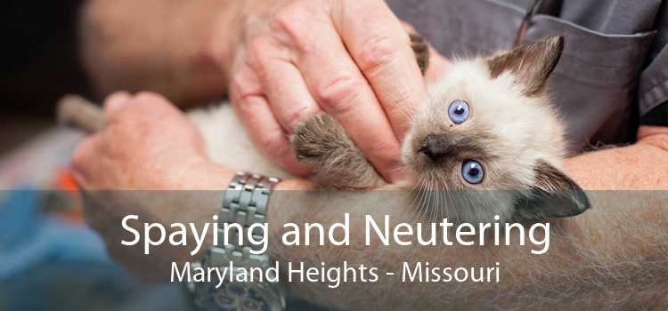 Spaying and Neutering Maryland Heights - Missouri