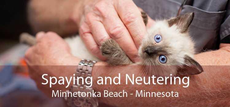 Spaying and Neutering Minnetonka Beach - Minnesota
