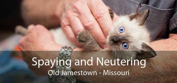 Spaying and Neutering Old Jamestown - Missouri