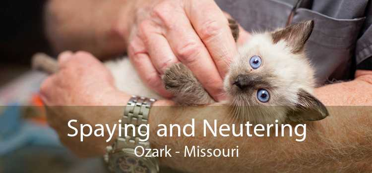 Spaying and Neutering Ozark - Missouri