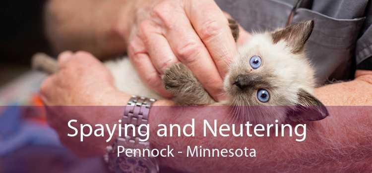 Spaying and Neutering Pennock - Minnesota