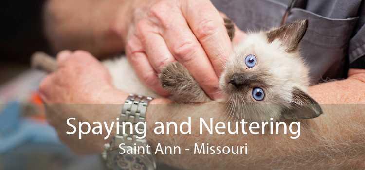 Spaying and Neutering Saint Ann - Missouri