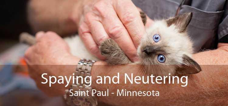 Spaying and Neutering Saint Paul - Minnesota
