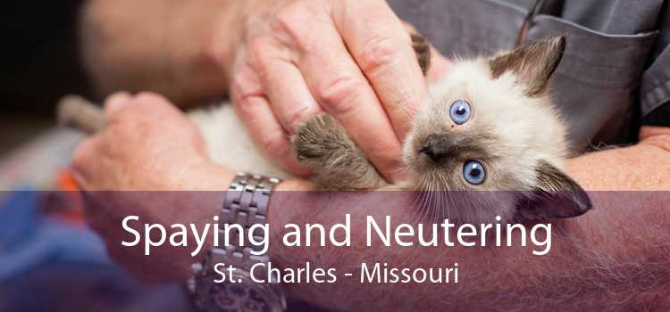 Spaying and Neutering St. Charles - Missouri