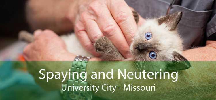 Spaying and Neutering University City - Missouri