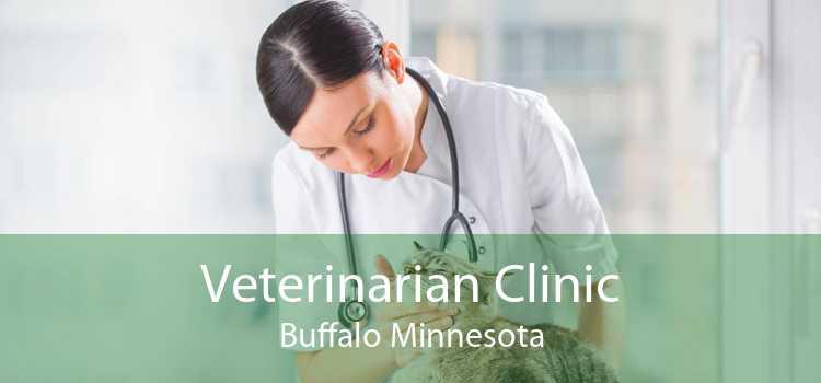 Veterinarian Clinic Buffalo Minnesota