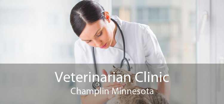 Veterinarian Clinic Champlin Minnesota