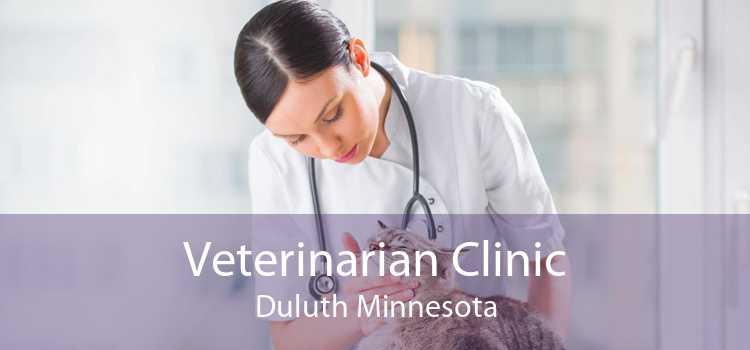 Veterinarian Clinic Duluth Minnesota
