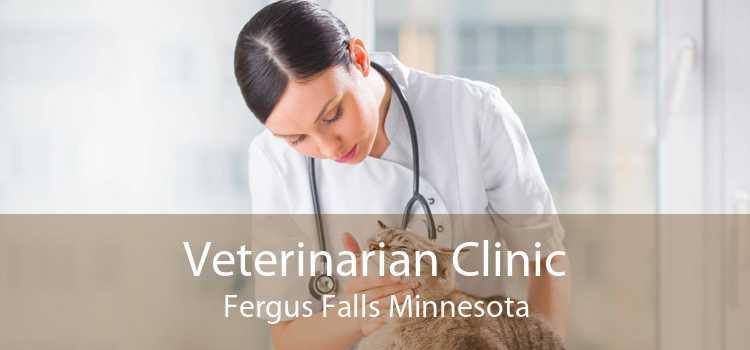 Veterinarian Clinic Fergus Falls Minnesota