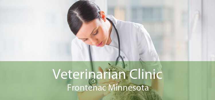 Veterinarian Clinic Frontenac Minnesota