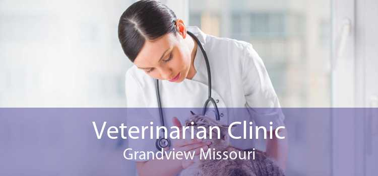 Veterinarian Clinic Grandview Missouri