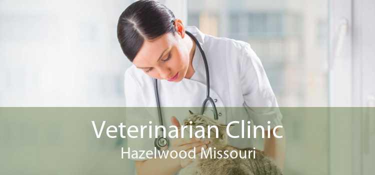 Veterinarian Clinic Hazelwood Missouri