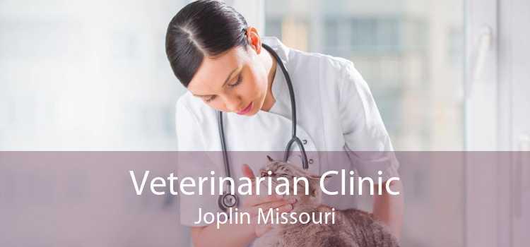 Veterinarian Clinic Joplin Missouri