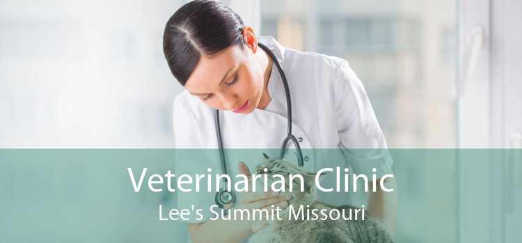 Veterinarian Clinic Lee's Summit Missouri
