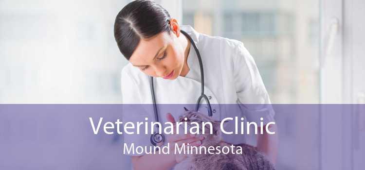 Veterinarian Clinic Mound Minnesota