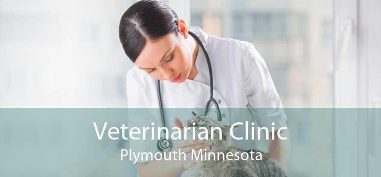 Veterinarian Clinic Plymouth Minnesota