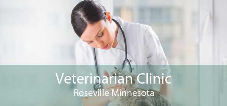 Veterinarian Clinic Roseville Minnesota