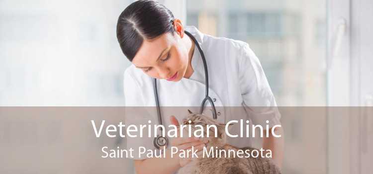 Veterinarian Clinic Saint Paul Park Minnesota