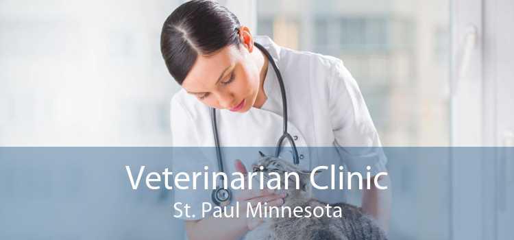 Veterinarian Clinic St. Paul Minnesota