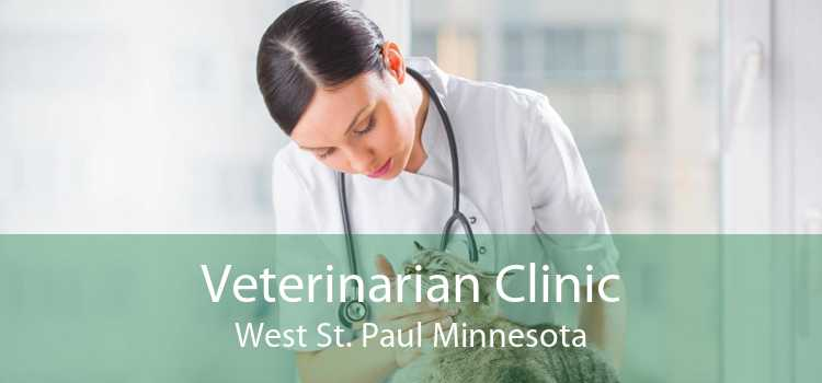 Veterinarian Clinic West St. Paul Minnesota