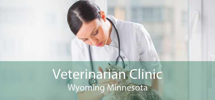 Veterinarian Clinic Wyoming Minnesota